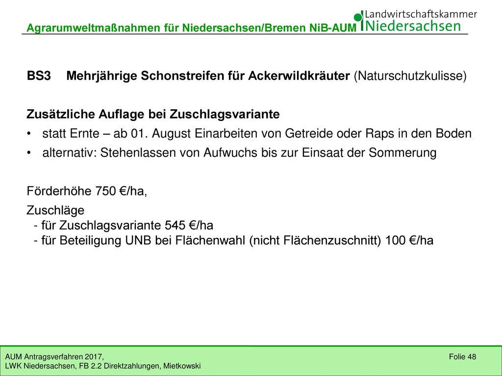 BS3 Mehrjährige Schonstreifen für Ackerwildkräuter (EFN)