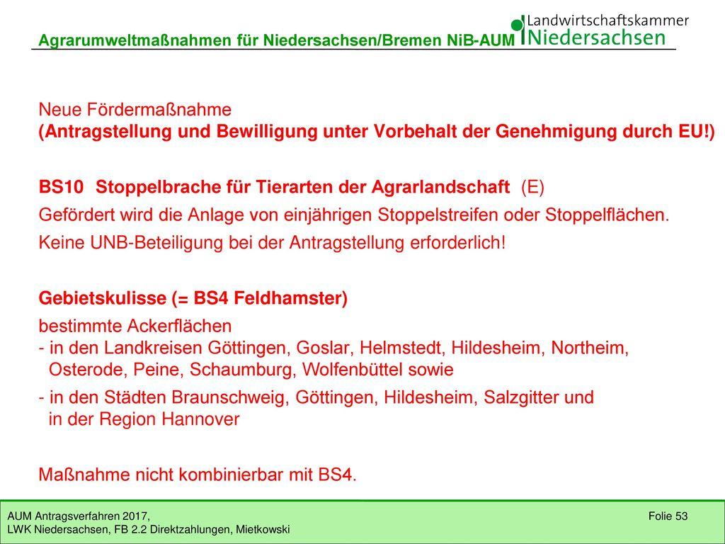 BS4 Mehrjährige Schonstreifen für den Feldhamster (Naturschutzkulisse)