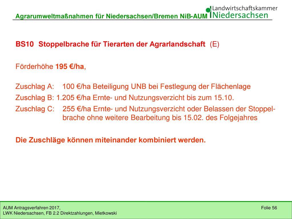 BS10 Stoppelbrache für Tierarten der Agrarlandschaft (E)