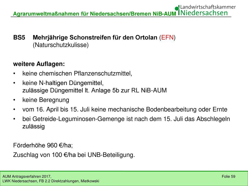 BS5 Mehrjährige Schonstreifen für den Ortolan (EFN)