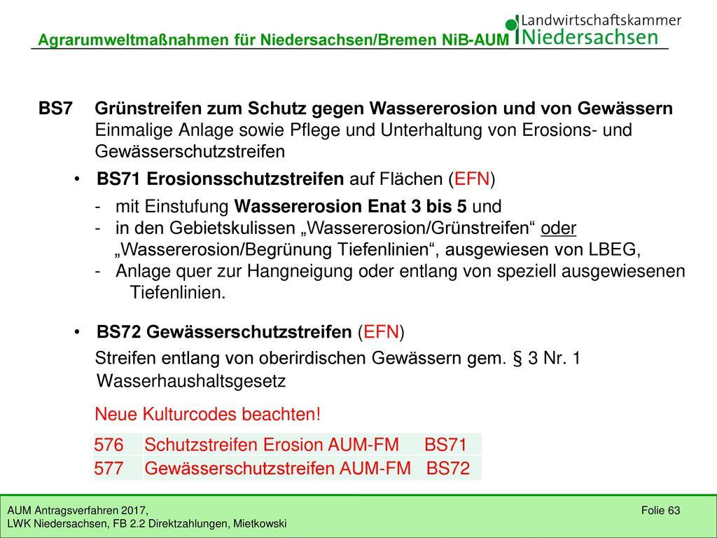 BS6 Mehrjährige Schonstreifen für den Rotmilan (Naturschutzkulisse)