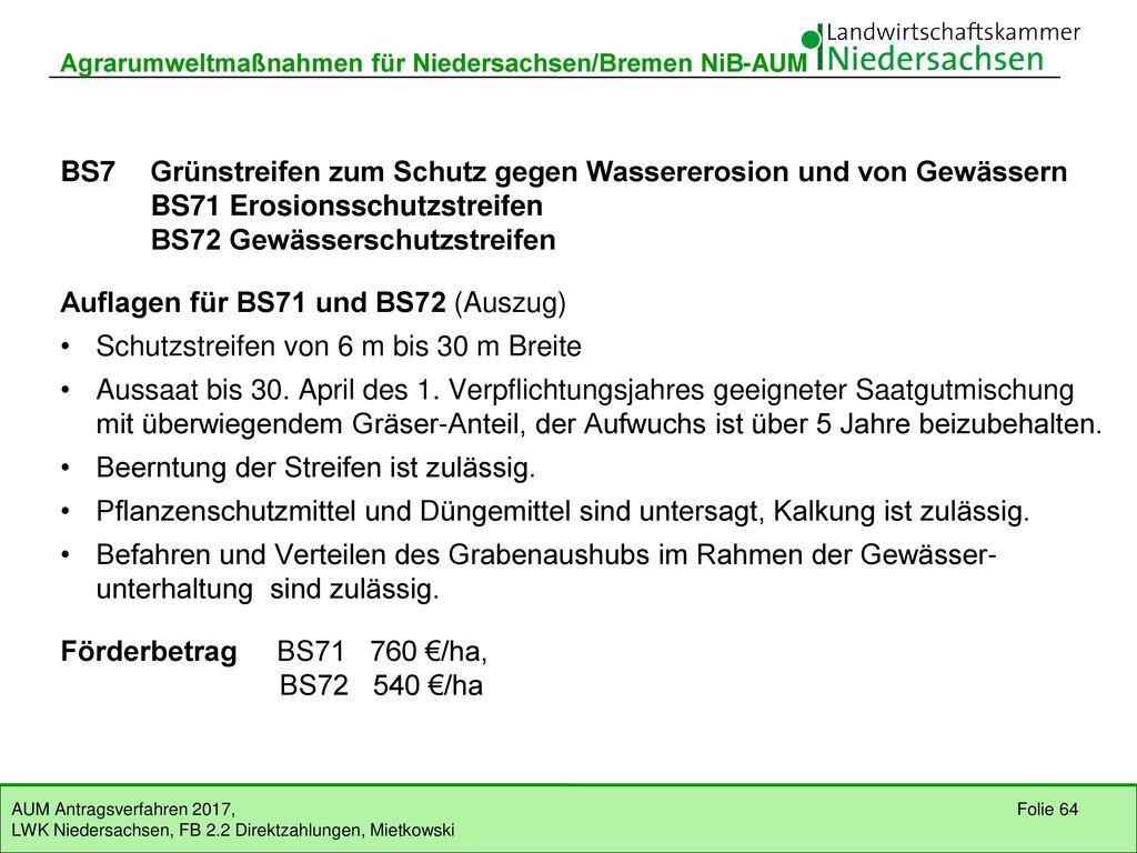 BS7 Grünstreifen zum Schutz gegen Wassererosion und von Gewässern