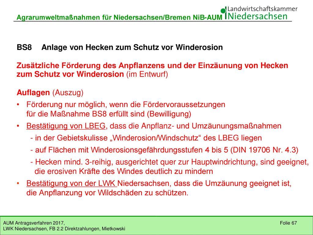 BS8 Anlage von Hecken zum Schutz vor Winderosion