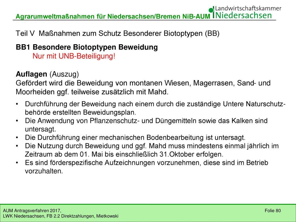 Teil V Maßnahmen zum Schutz Besonderer Biotoptypen (BB)