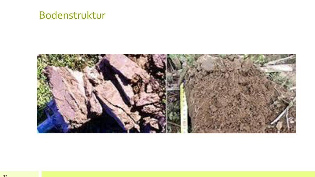 Bodenstruktur