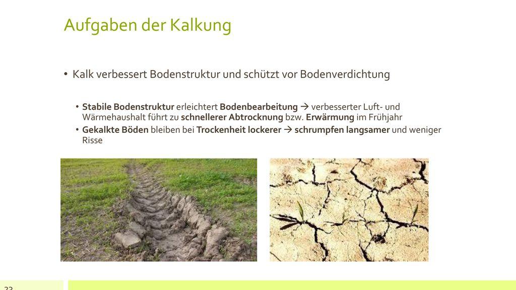 Aufgaben der Kalkung Kalk verbessert Bodenstruktur und schützt vor Bodenverdichtung.