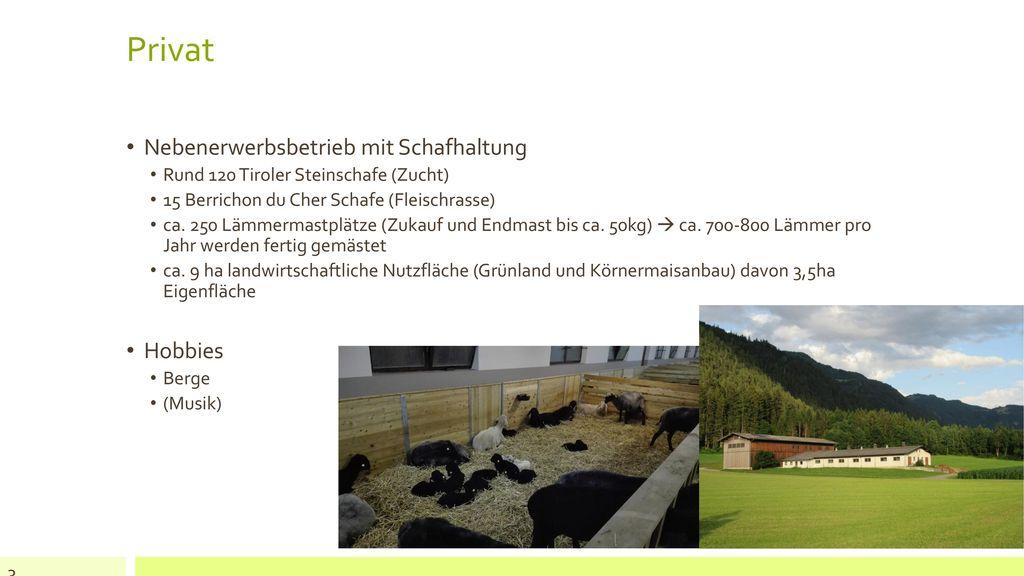 Privat Nebenerwerbsbetrieb mit Schafhaltung Hobbies