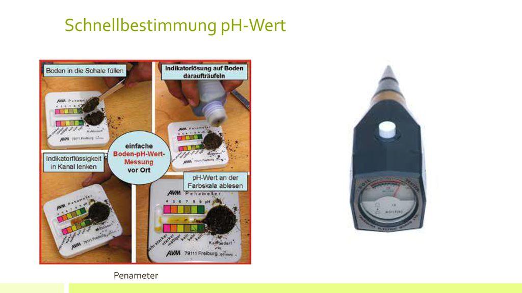 Schnellbestimmung pH-Wert