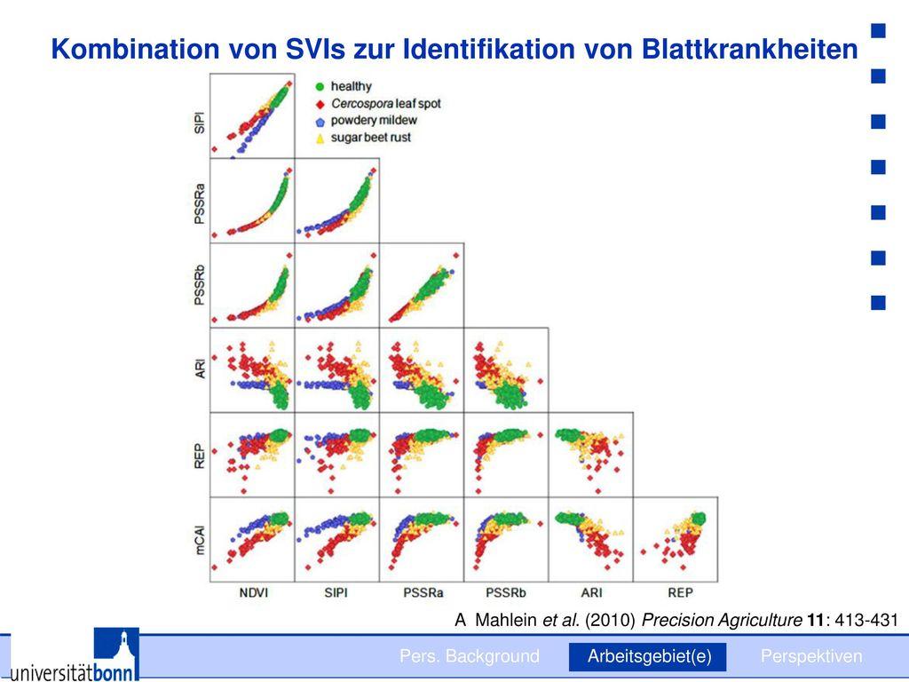 Kombination von SVIs zur Identifikation von Blattkrankheiten