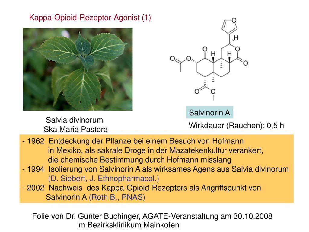 Kappa-Opioid-Rezeptor-Agonist (1)