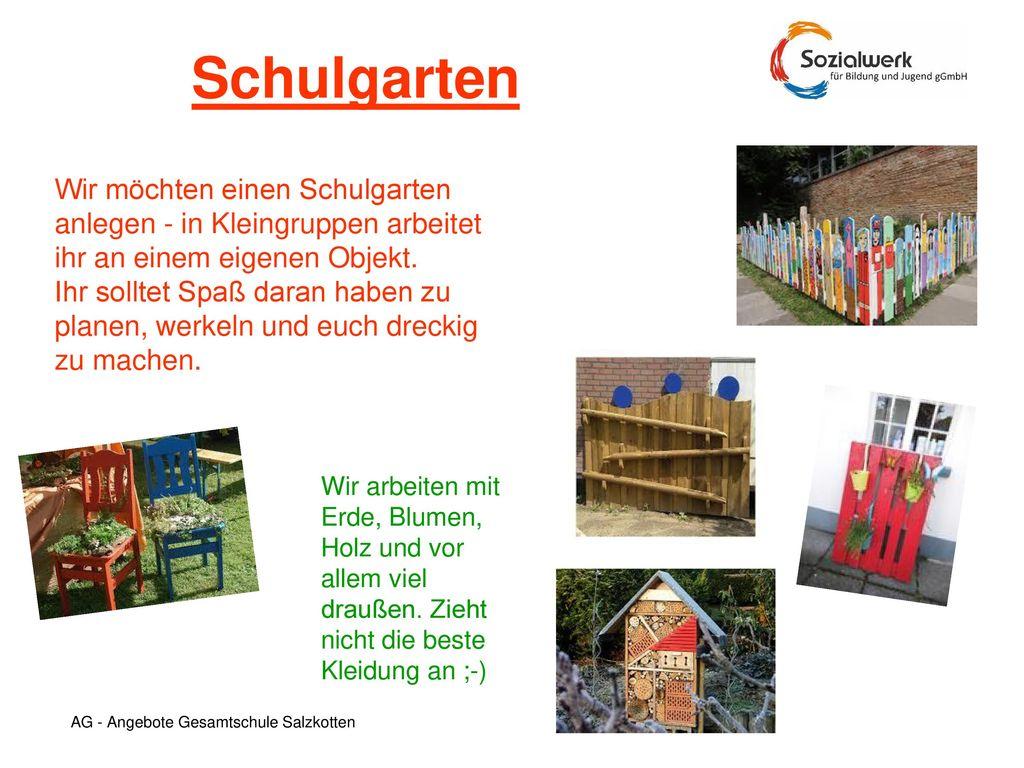 Schulgarten Wir möchten einen Schulgarten anlegen - in Kleingruppen arbeitet ihr an einem eigenen Objekt.
