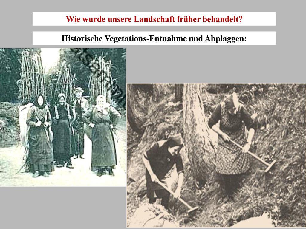 Wie wurde unsere Landschaft früher behandelt