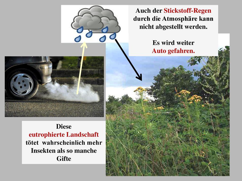 Auch der Stickstoff-Regen durch die Atmosphäre kann nicht abgestellt werden.