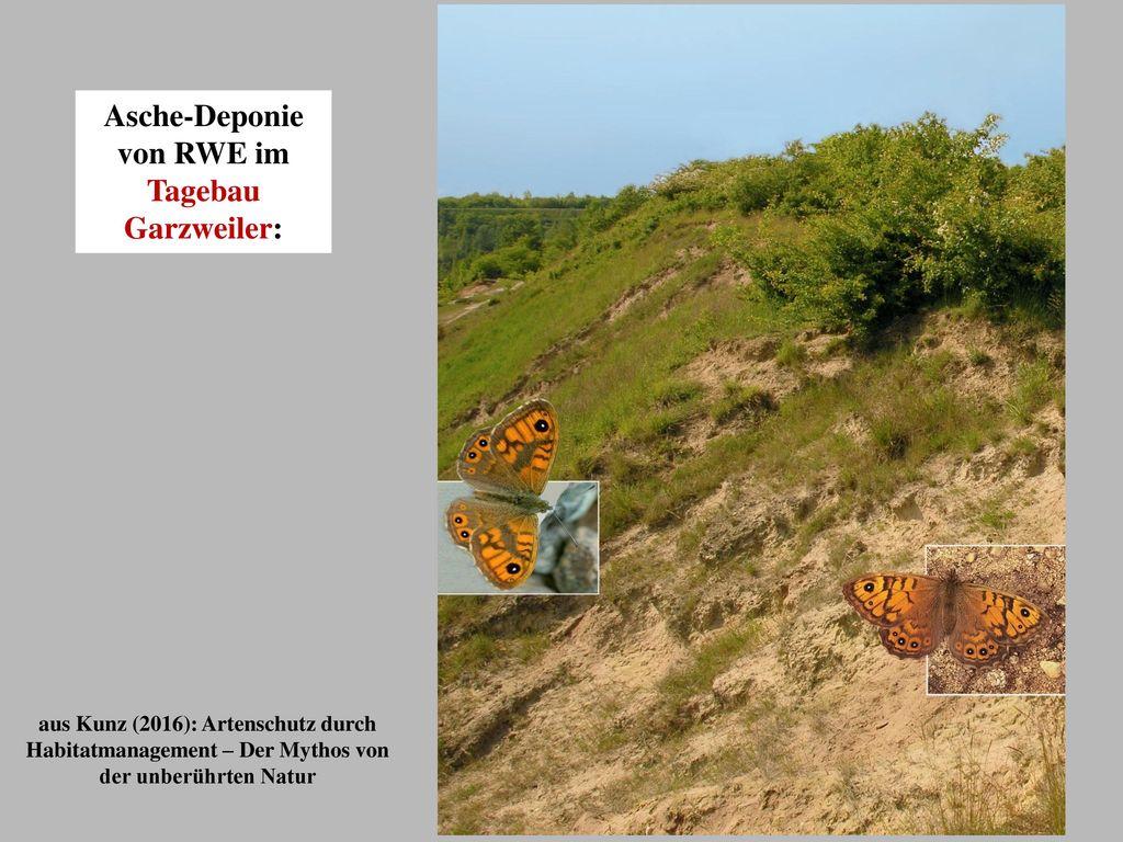Asche-Deponie von RWE im Tagebau Garzweiler: