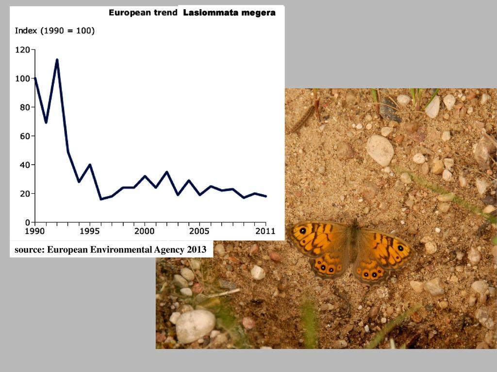 source: European Environmental Agency 2013