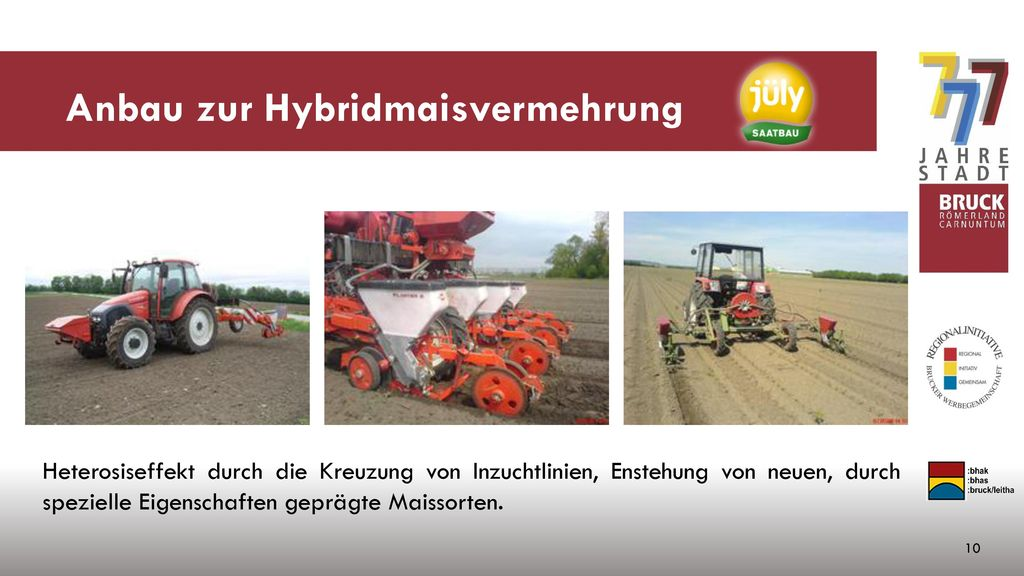 Anbau zur Hybridmaisvermehrung