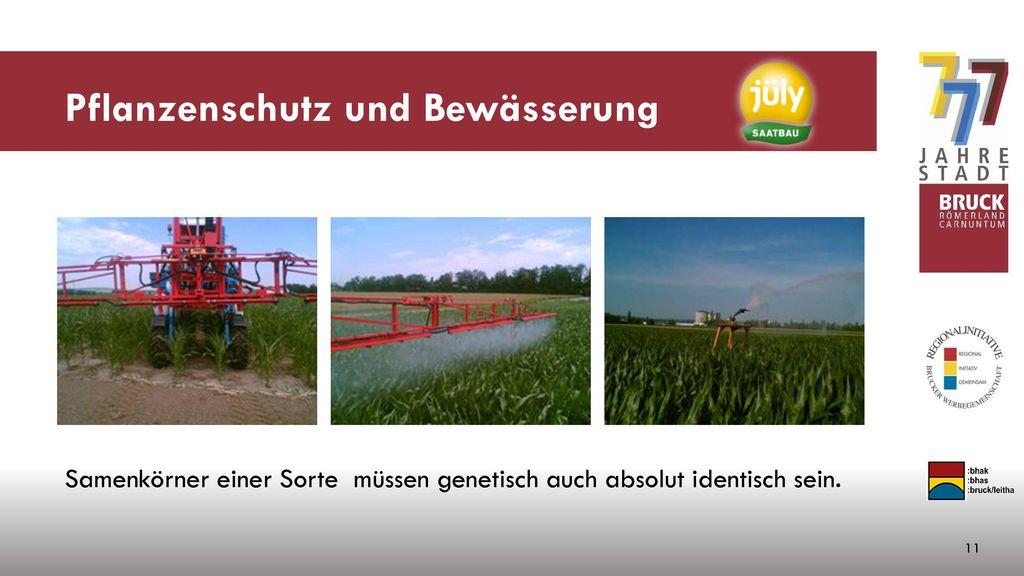 Pflanzenschutz und Bewässerung