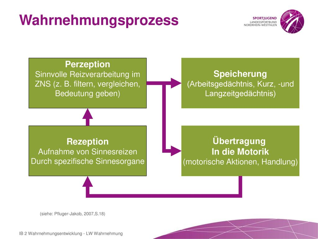 Wahrnehmungsprozess Perzeption Speicherung Rezeption Übertragung