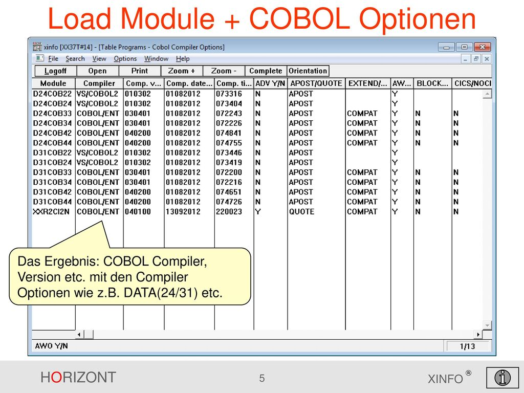 Load Module + COBOL Optionen