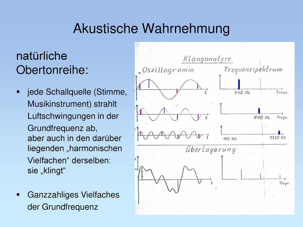 Akustische Wahrnehmung