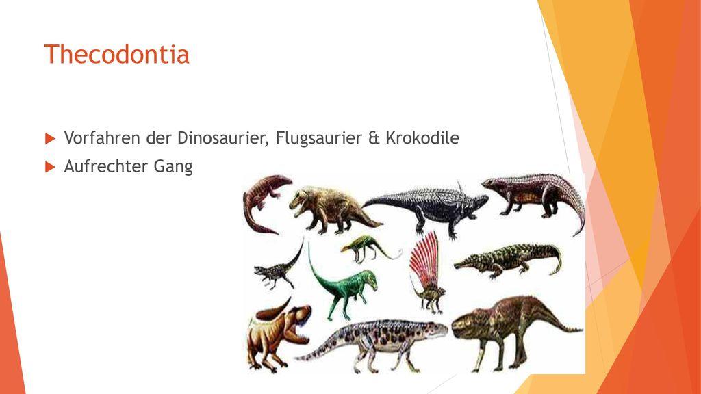 Thecodontia Vorfahren der Dinosaurier, Flugsaurier & Krokodile