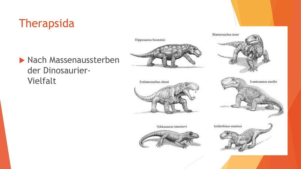 Therapsida Nach Massenaussterben der Dinosaurier- Vielfalt