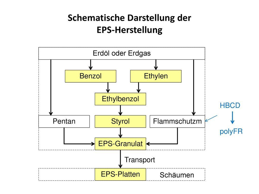 Schematische Darstellung der EPS-Herstellung