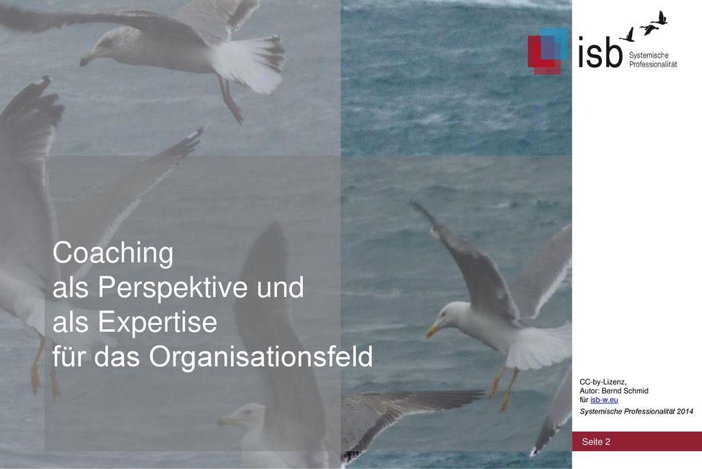 Coaching als Perspektive und als Expertise für das Organisationsfeld