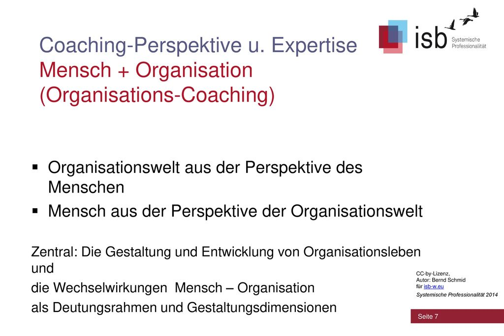 Coaching-Perspektive u