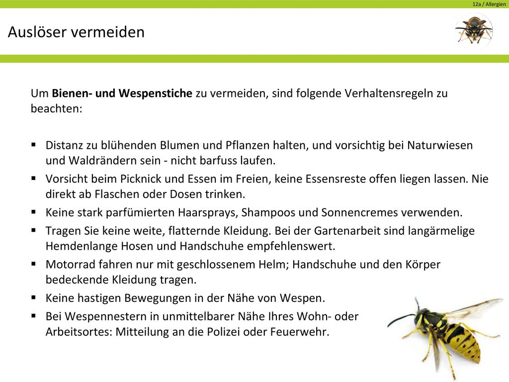 Auslöser vermeiden Um Bienen- und Wespenstiche zu vermeiden, sind folgende Verhaltensregeln zu beachten: