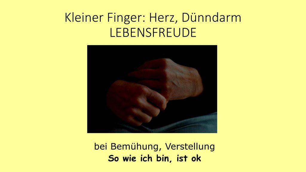 Kleiner Finger: Herz, Dünndarm LEBENSFREUDE