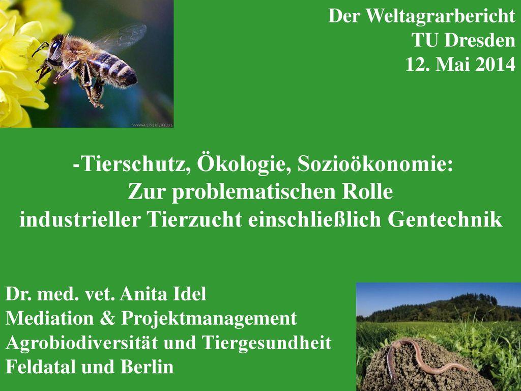 -Tierschutz, Ökologie, Sozioökonomie: Zur problematischen Rolle