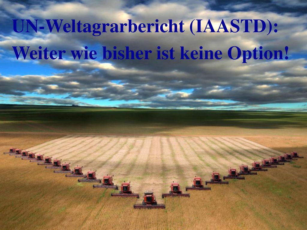 UN-Weltagrarbericht (IAASTD): Weiter wie bisher ist keine Option!