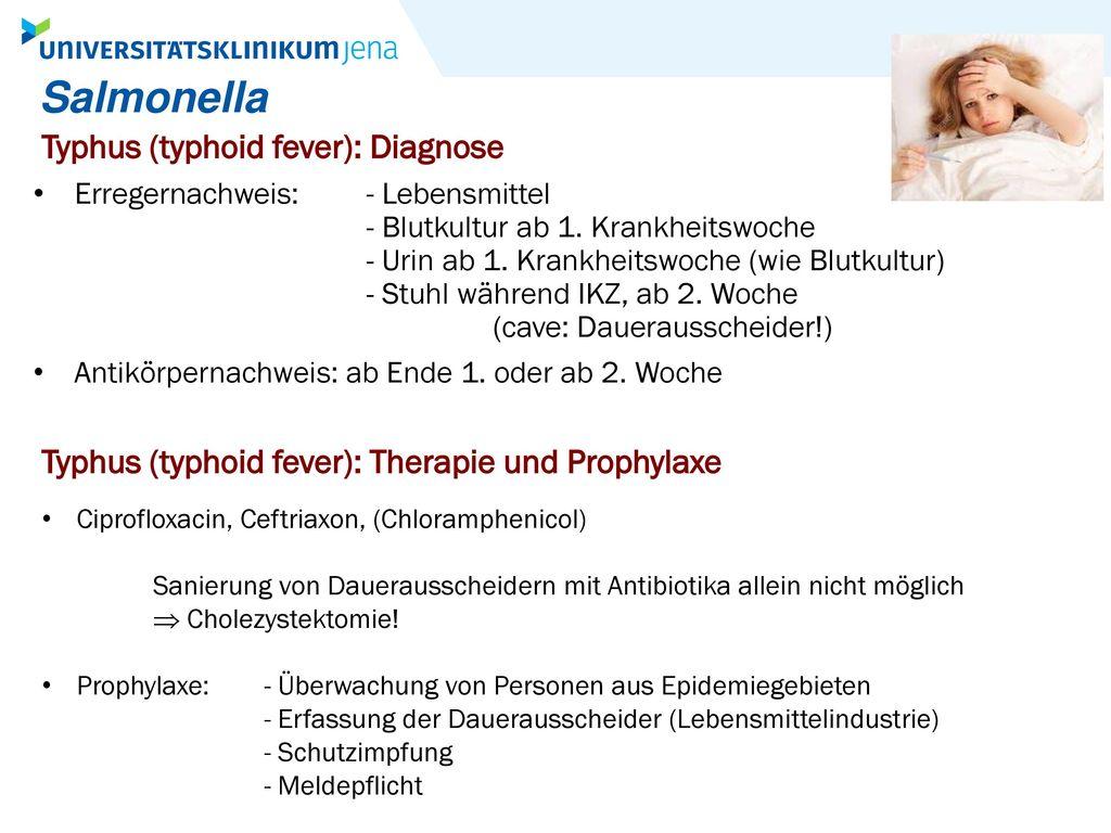 Salmonella Typhus (typhoid fever): Diagnose