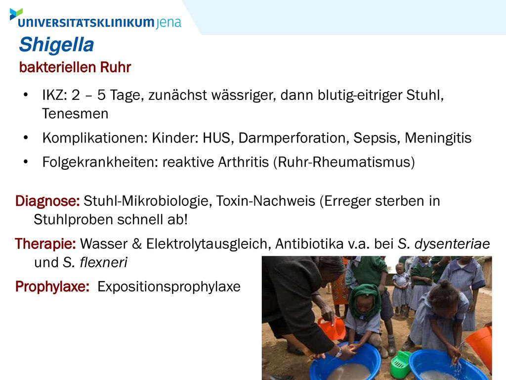 Shigella bakteriellen Ruhr