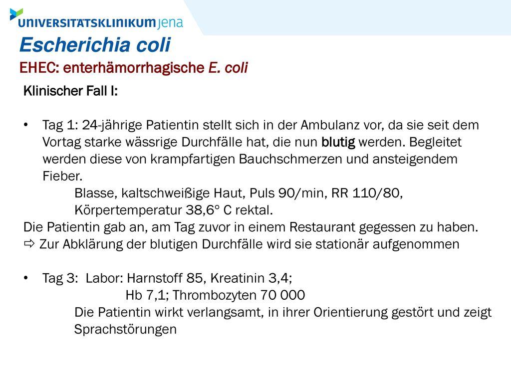 Escherichia coli EHEC: enterhämorrhagische E. coli Klinischer Fall I:
