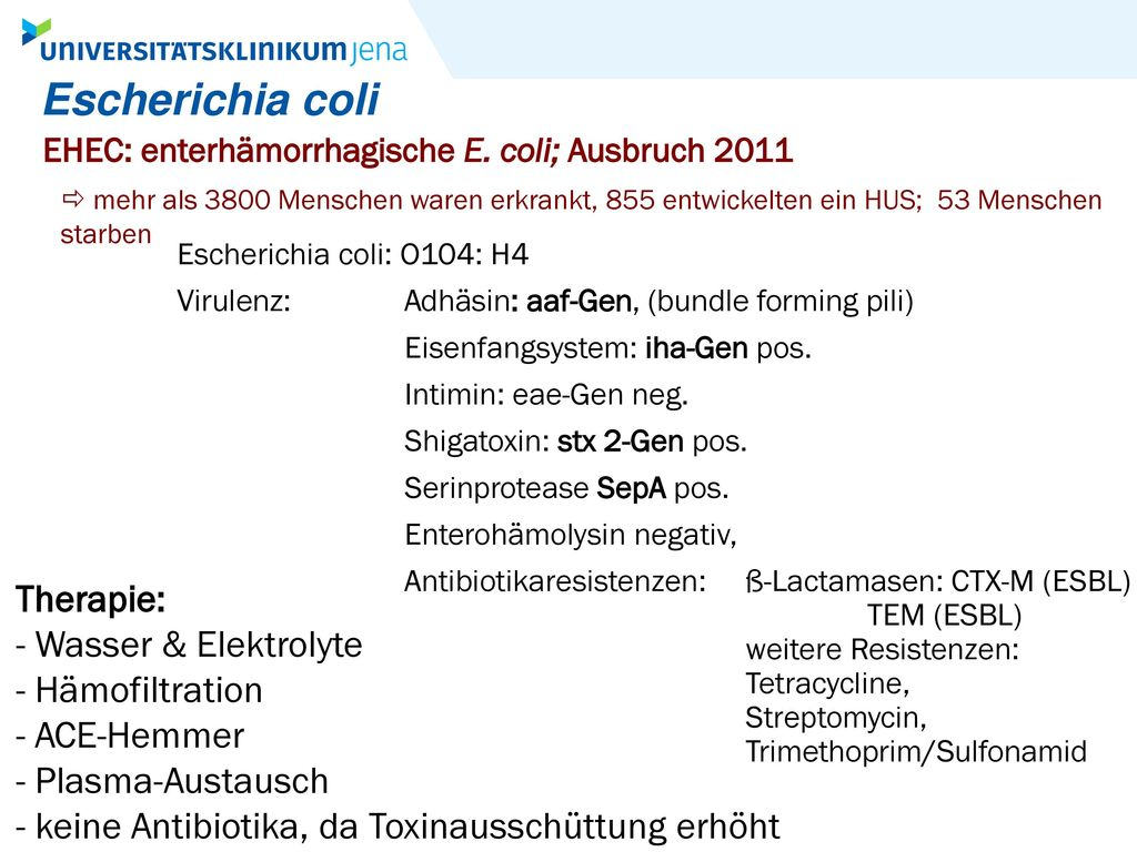 Escherichia coli Therapie: - Wasser & Elektrolyte - Hämofiltration