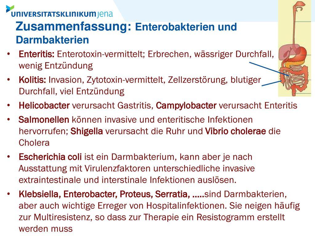 Groß Nahrung Mikrobiologezusammenfassung Fotos - Entry Level Resume ...