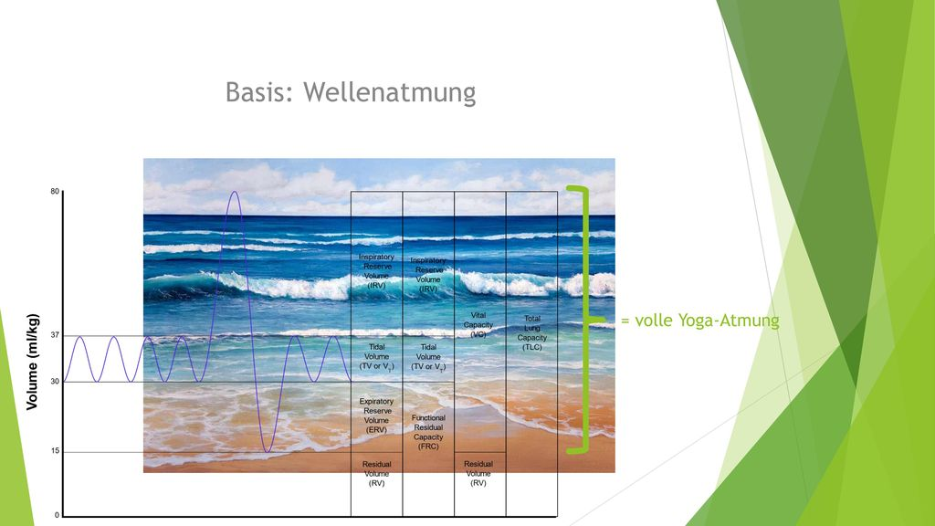 Basis: Wellenatmung = volle Yoga-Atmung