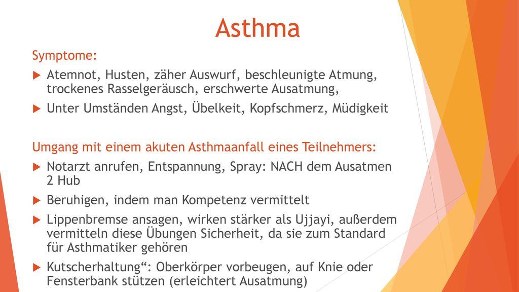 Asthma Symptome: Atemnot, Husten, zäher Auswurf, beschleunigte Atmung, trockenes Rasselgeräusch, erschwerte Ausatmung,