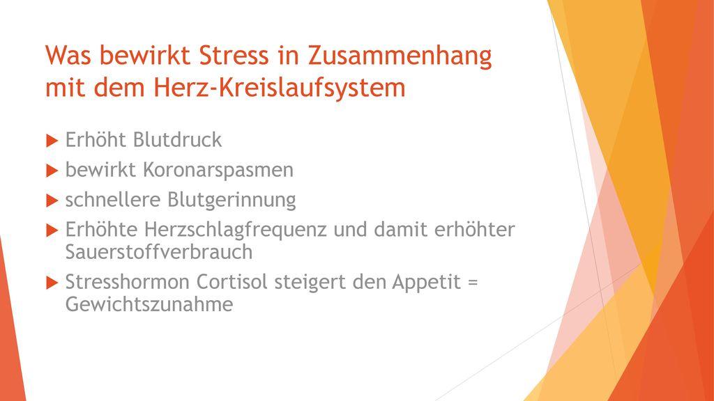 Was bewirkt Stress in Zusammenhang mit dem Herz-Kreislaufsystem