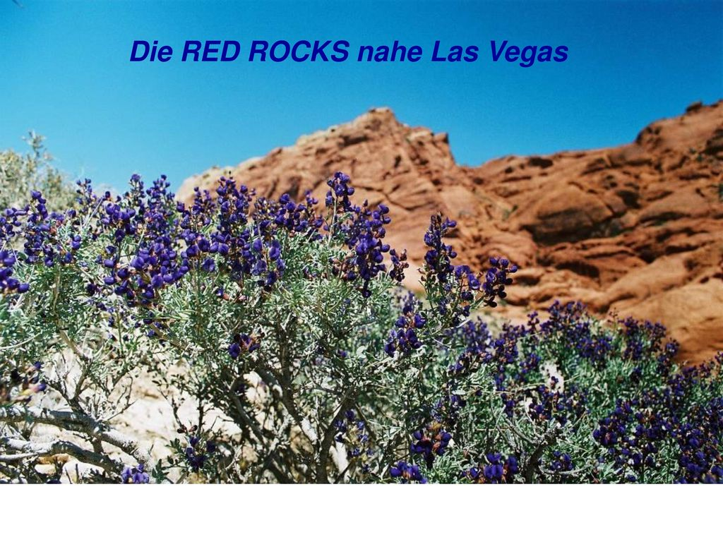 Die RED ROCKS nahe Las Vegas