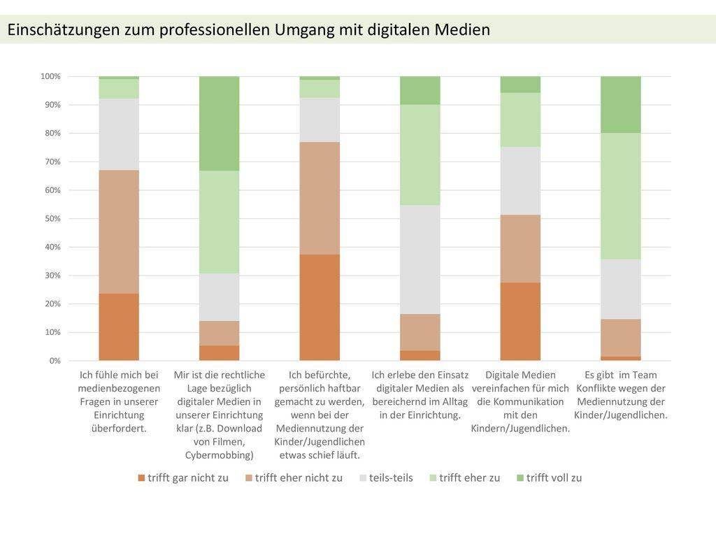 Einschätzungen zum professionellen Umgang mit digitalen Medien