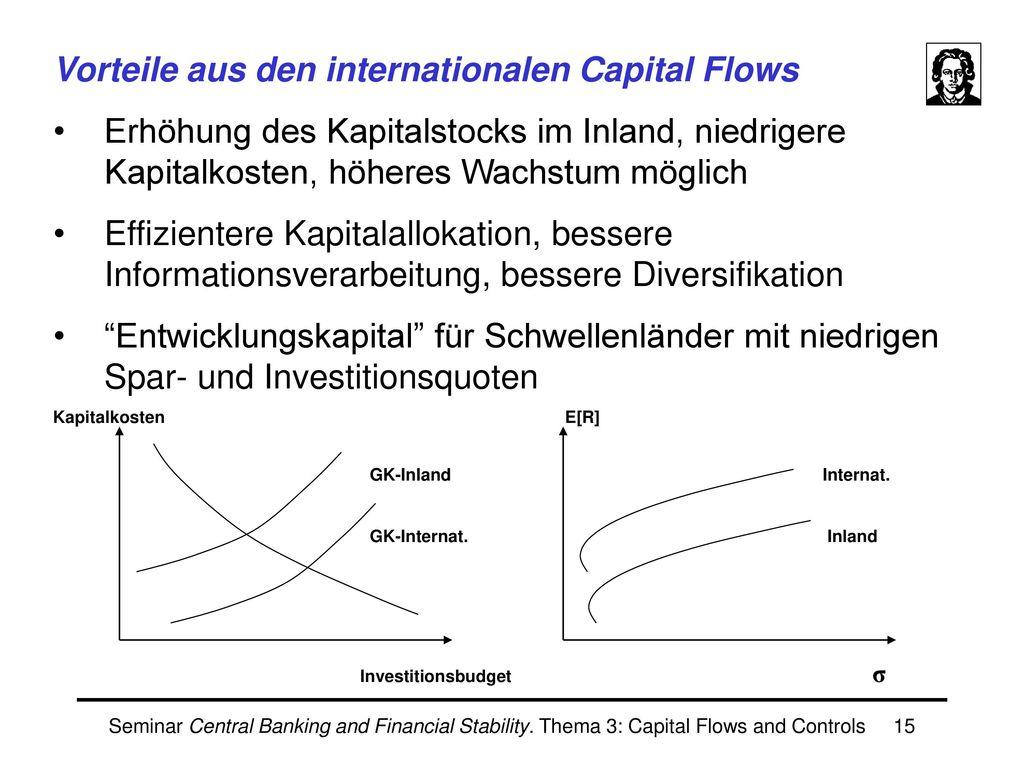 Ivaylo Zonev II. Capital Flows und Finanzkrisen