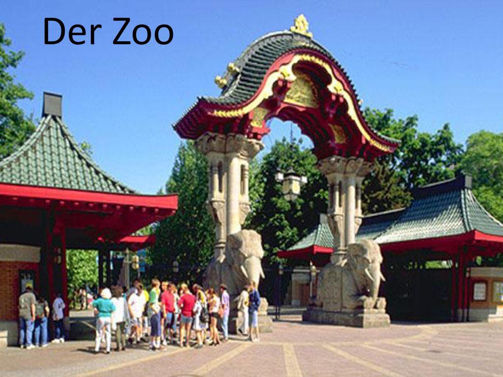 Der Zoo Der Zoo