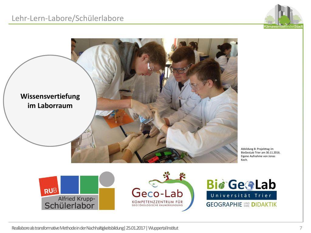 Wissensvertiefung im Laborraum