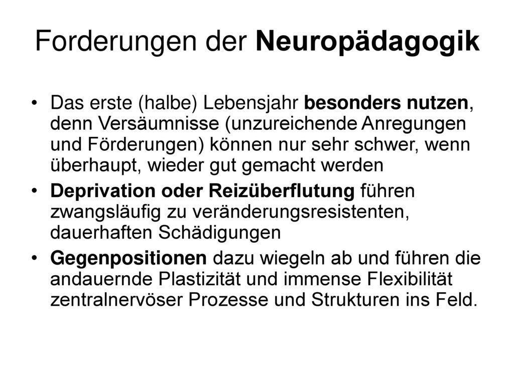 Forderungen der Neuropädagogik