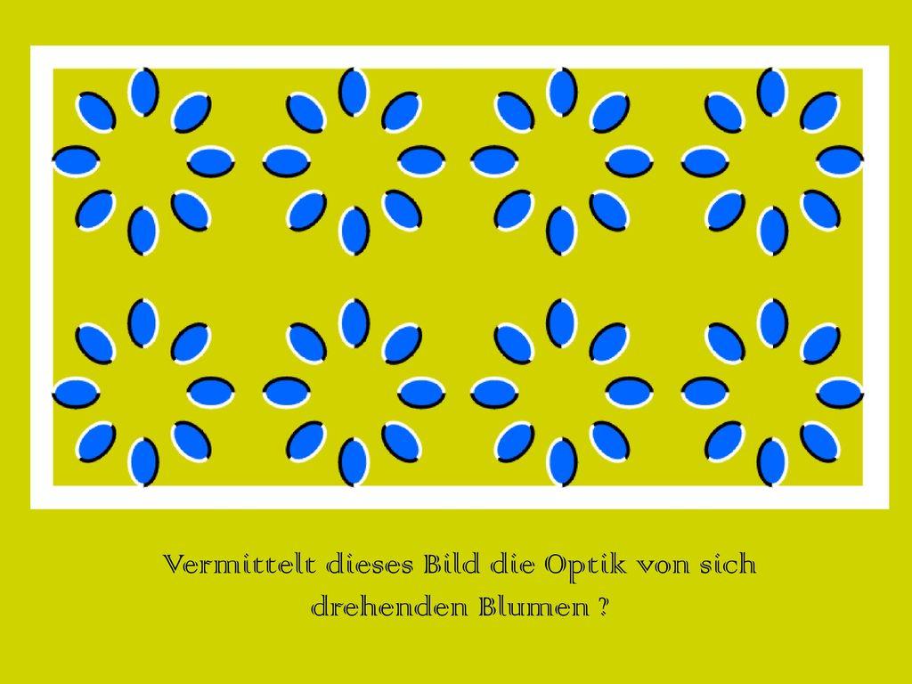 Vermittelt dieses Bild die Optik von sich drehenden Blumen