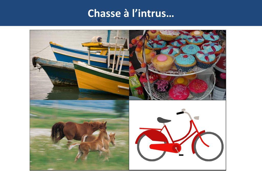Chasse à l'intrus… http://www.flickr.com/photos/luigioss/3861019223/ Camargue horses.