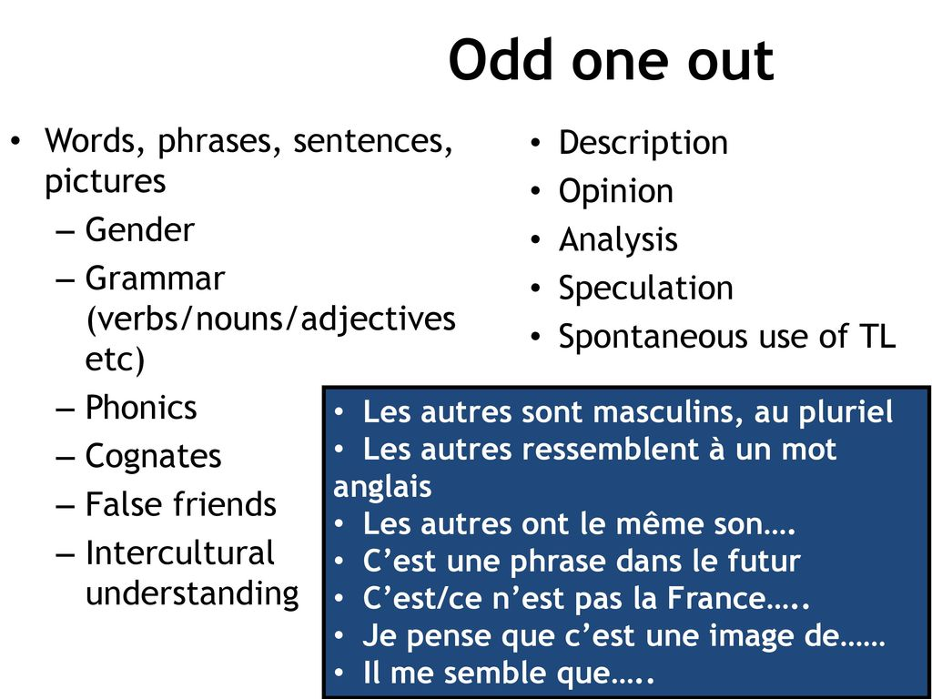 Odd one out Words, phrases, sentences, pictures Description Opinion